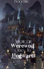 American Werewolf goes to Hogwarts by Baodune