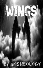 Wings by josheology