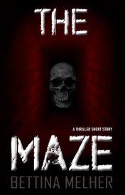 THE MAZE by BettinaMelher