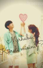 Merhaba,Koreli misiniz?~ │ASKIDA │ by Dreamerpanda