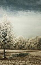 Winterseelen by layna24