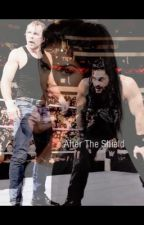 After The Shield  by Lunatic_Princess_66