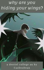 Why Are You Hiding Your Wings? | Destiel College AU by CasDesDean