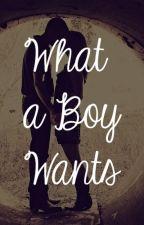 What A Boy Wants by EndlesslyWondering