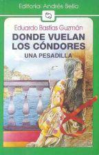 Donde Vuelan Los Cóndores- Eduardo Bastías Guzman. by josseeffa_06
