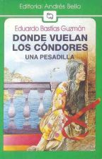 Donde Vuelan Los Cóndores- Eduardo Bastías Guzman. by JoseffaGB