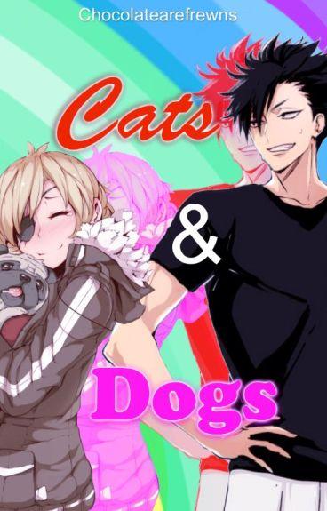 Cats & Dogs ((Haikyuu fanfic: Kuroo Tetsurou))