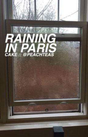 raining in paris :: cake au by peachteas
