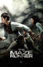 Maze Runner one shots Request closed by team_geek