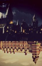 What the fuck! Hogwarts? (Harry Potter - Next Generation) by Everyone_Is_A_Moon21