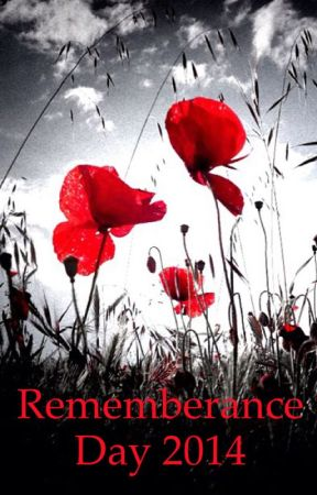 Remembrance Day Poems For The Fallen Robert Lawrence