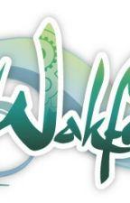 Wakfu: Percedal's Sister by littlebitofnothing