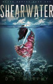 Shearwater by Derek-S-Murphy