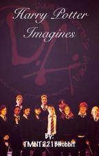 Harry Potter Imagines by TMNT221BHobbit