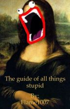 The guide of all things stupid by Flame1007