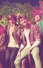 •Summer Love• ♥ Harry y tu ♥ by taty_directioner14