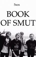 5sos BOOK OF SMUT by 5sauce_buks