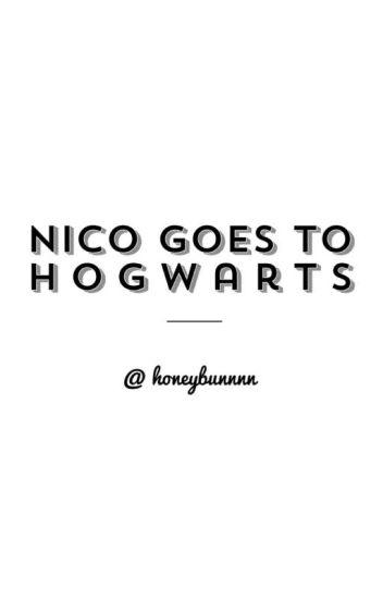 Nico goes to hogwarts ( Percy Jackson Fanfiction )
