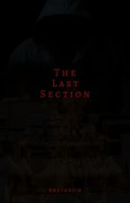 THE LAST SECTION (COMPLETED) by edbel_bea