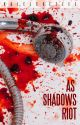 AS SHADOWS RIOT (BOOK TWO) by kalelcoetzee