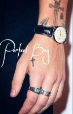 Perfect Boy ||h.s|| by kingstylxs