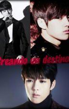 Creando un destino.(infinite y tu) by marididin96