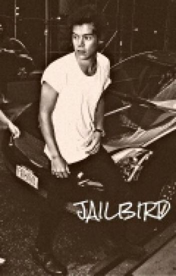 Jailbird [Harry Styles AU]