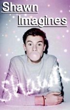 Imagines || s.m by chickenletti