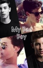 ❥My Bad Boy❥ (A Shawn Mendes FanFiction) by HayesandShawn