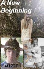 A New Beginning (A Walking Dead fan fiction) by jet1227