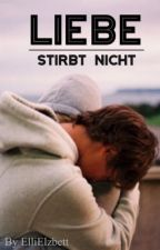 Liebe stirbt nicht! (BoyxBoy) by ElliElzbett