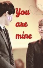 [Long fic-ChanBaek](NC-17)You are mine by thu308_01