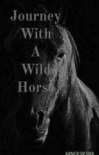 Journey With A Wild Horse by XxNekocoxX