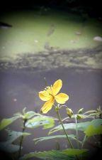 Cvijet bez korijena by GoranaK
