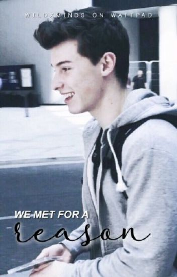 We Met for a Reason (Shawn Mendes)