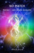 No match (Français) - Tome 1: Les âmes-sœurs by ameblanche23