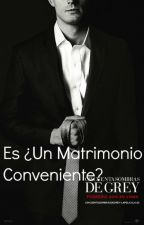 Es ¿Un matrimonio conveniente ?(PAUSADA) by StephanieBravo0