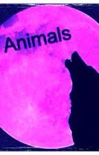 Animals by reagan_luv270