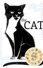 The Life of a Cat by Fourminette
