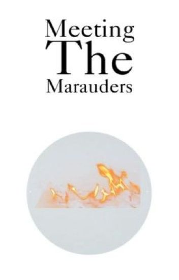 Meeting the Marauders (CZECH) (On hold)
