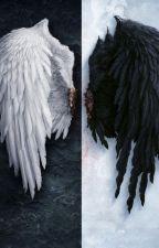 The love Between A Dark and White Angel by DarkAngel201424