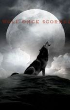 Wolf Once Scorned- A Marauders Tale by whispering_memories