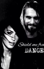 Shield me from danger • Seth Rollins• by fearlessmeg