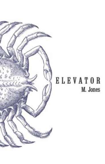 ELEVATOR by MJones