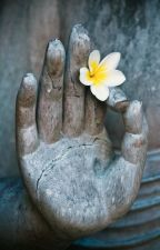 Phật dạy by Ga_que