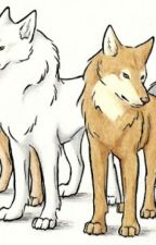 sendokai  wolf by mika-wolf