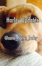 Harley Updates by Come_home_Harley
