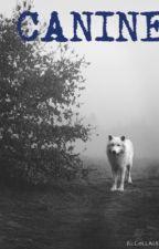 Canine by bALLERINA88