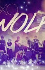 Werewolf Boys ( Exo ) by Cute_Kpop_Girl