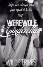 Werewolf Cinderella by wildstripes